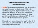 androesterilidad inducida ambientalmente1