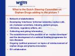 what is the dutch steering committee on orphan drugs adding to the picture