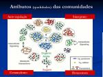 atributos qualidades das comunidades