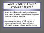 what is wbieg level 2 evaluation toolkit