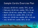 sample cardio exercise plan