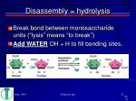 disassembly hydrolysis