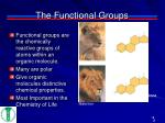 the functional groups1