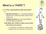 what is a fape