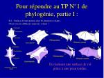 pour r pondre au tp n 1 de phylog nie partie i2