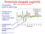 potentiels voqu s cognitifs erp event related potentials