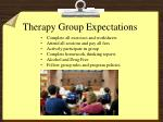 therapy group expectations