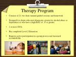 therapy program