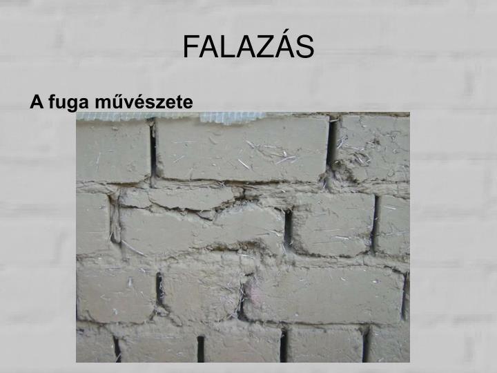 FALAZÁS