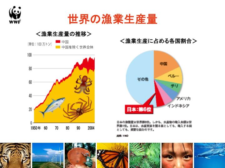 <漁業生産量の推移>