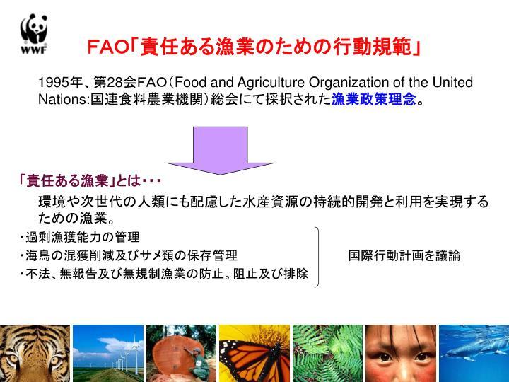 FAO「責任ある漁業のための行動規範」