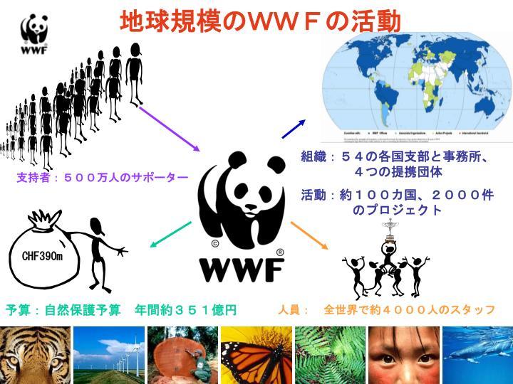 地球規模のWWFの活動