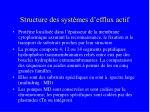 structure des syst mes d efflux actif