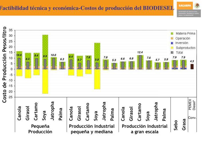 Factibilidad técnica y económica-Costos de producción del BIODIESEL