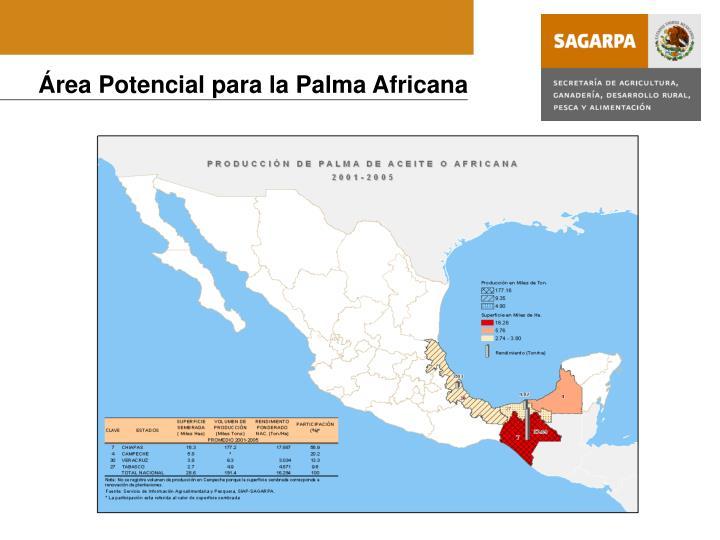 Área Potencial para la Palma Africana