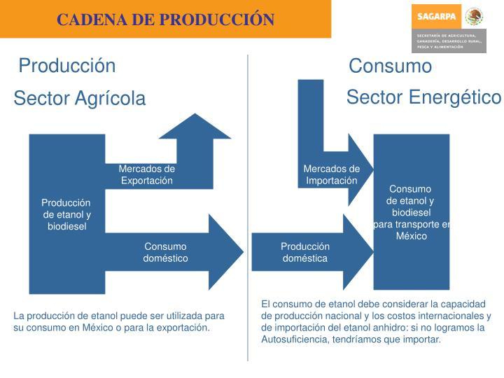 CADENA DE PRODUCCI