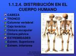 1 1 2 4 distribuci n en el cuerpo humano