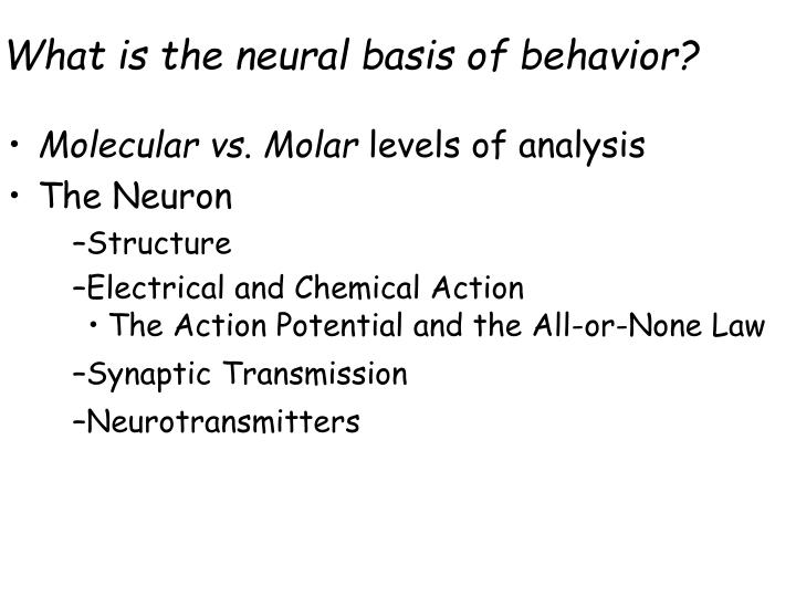 what is the neural basis of behavior n.