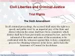 civil liberties and criminal justice2