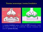 tossine neurotrope tossina botulinica
