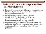 poduzetni tvo u velikim poduze ima intrapreneurship