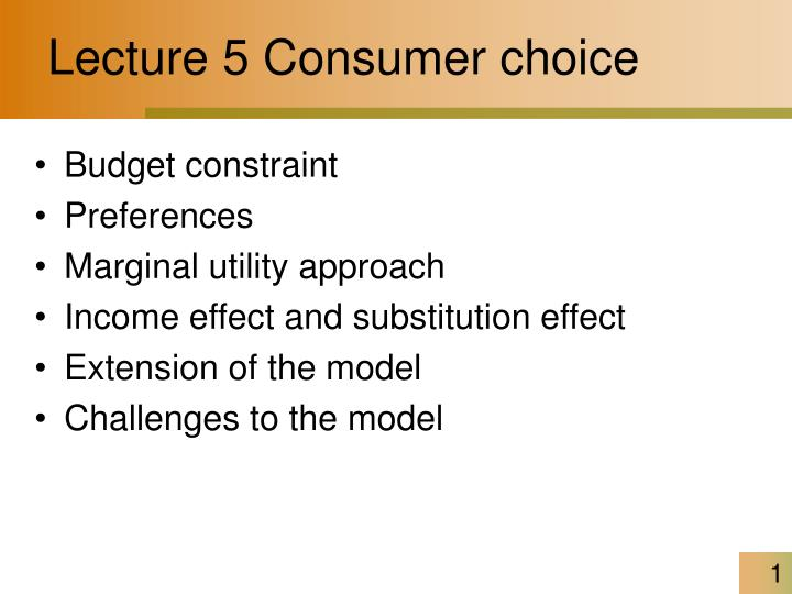 lecture 5 consumer choice n.