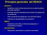 principios generales del reach