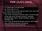 tnm ajcc 2002