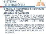 sistema respirat rio2