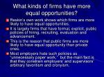 what kinds of firms have more equal opportunities