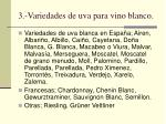 3 variedades de uva para vino blanco