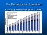 the demographic transition2