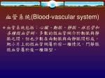 blood vascular system