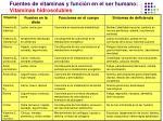 fuentes de vitaminas y funci n en el ser humano vitaminas hidrosolubles