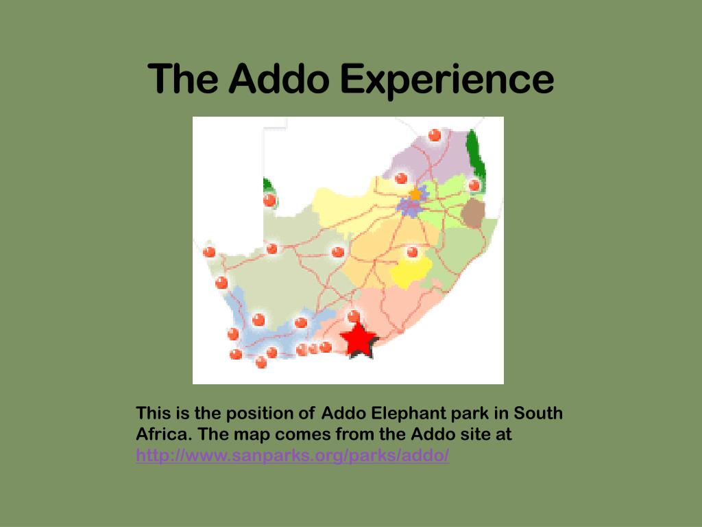 the addo experience l.