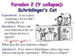 paradox 2 y collapse schr dinger s cat14