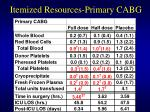 itemized resources primary cabg