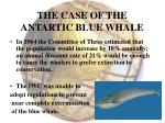 the case of the antartic blue whale