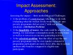 impact assessment approaches