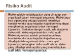 risiko audit
