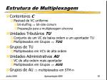 estrutura de multiplexagem2