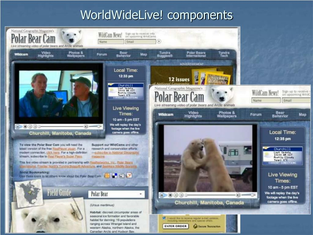 WorldWideLive! components