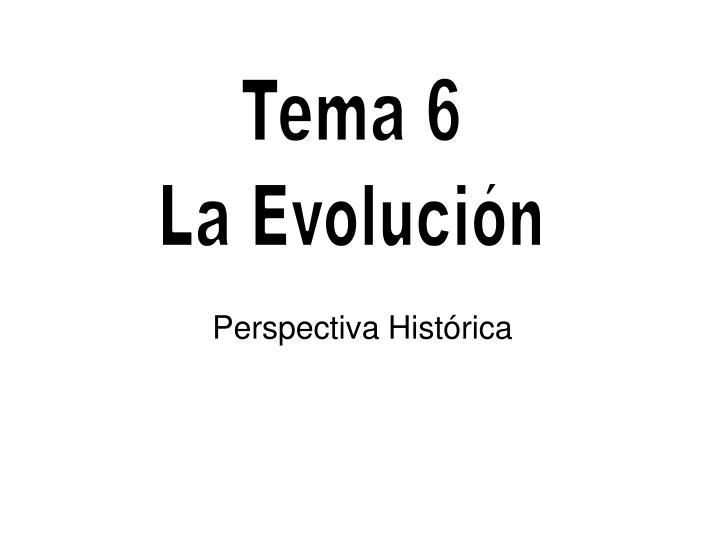perspectiva hist rica n.