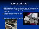 exfoliacion i