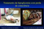 tratamento da hipoglicemia com perda de consci ncia