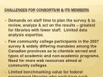 challenges for consortium its members
