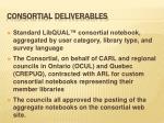 consortial deliverables