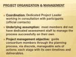 project organization management