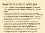 concepto de pueblos indigenas
