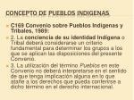 concepto de pueblos indigenas1